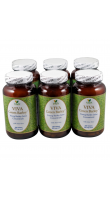 VIVA Green Barley® /Aloe - (300 tablets) [6 bottles]